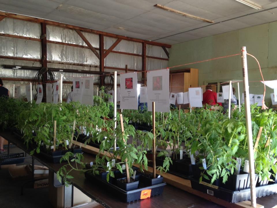 Iowa County Master Gardeners