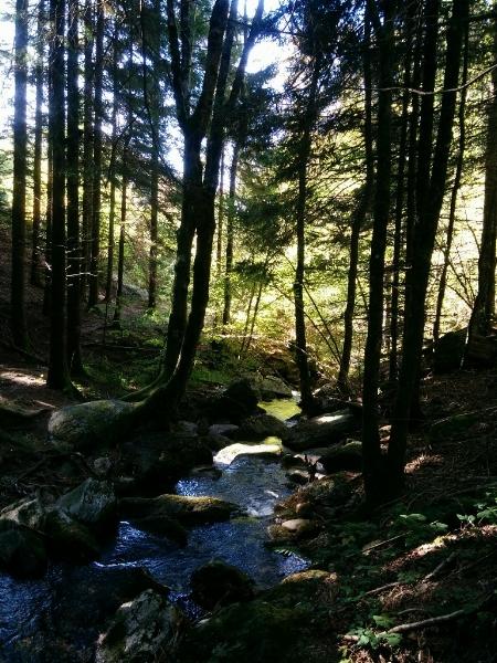 The Amazing Stroll: Hiking eye candy