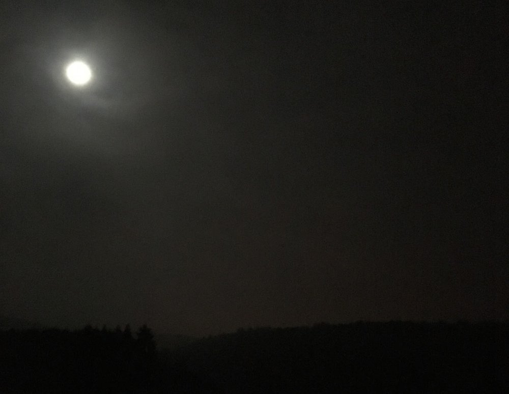Going through the night, never alone and feeling very much at home in the company of the moon