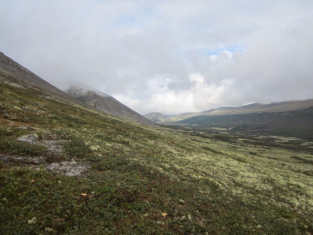 Fog in Rondane