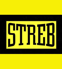 Streb logo.jpg