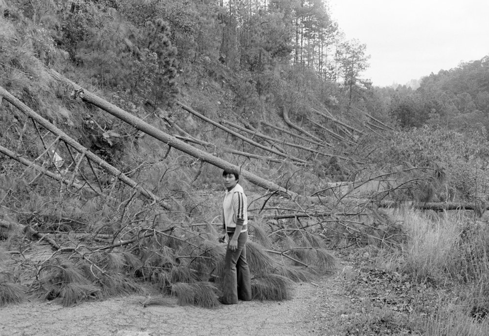 Guatemalan army soldiers and unidentified locals clear a section of the Pan American Highway blocked by felled trees during the civil war in Los Encuentros, Guatemala March 7, 1982. The trees were cut by the Guerrilla Army of the Poor, or EGP, to block the road on the day of presidential elections.
