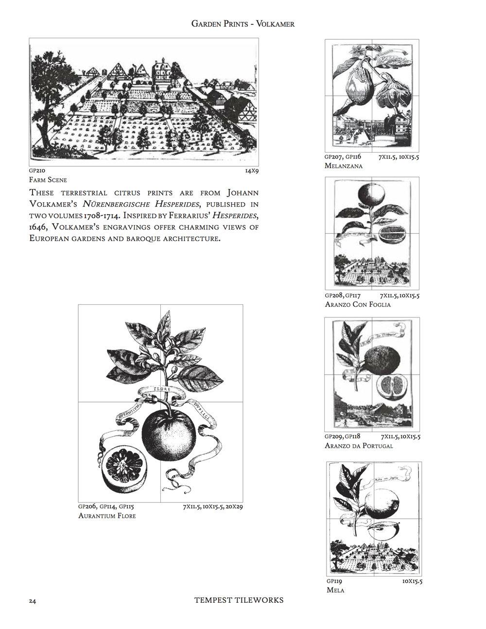 pg9.jpg