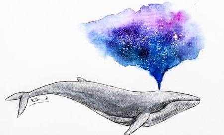 sperm~whale.jpg
