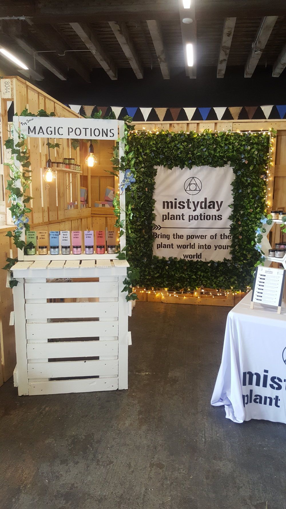 - Misty Day Plant Potions at the NZ Coffee Festival.Fairy Lights and Edison Drops to light up her store@mistydayplantpotions