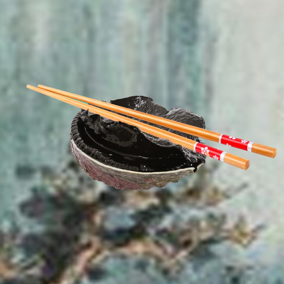 Simon Kaan,  Paua and Chopsticks,  2018