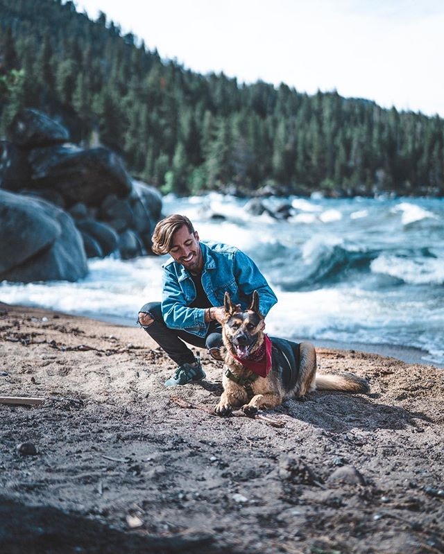 Teaching my new buddy Gunther how to work his Instagram game but he seems way more interested in treats. Same dude. @funfur_gunther @renotahoe #renotahoe