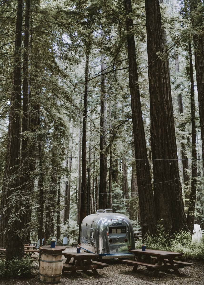 Airstream in the Forest Print