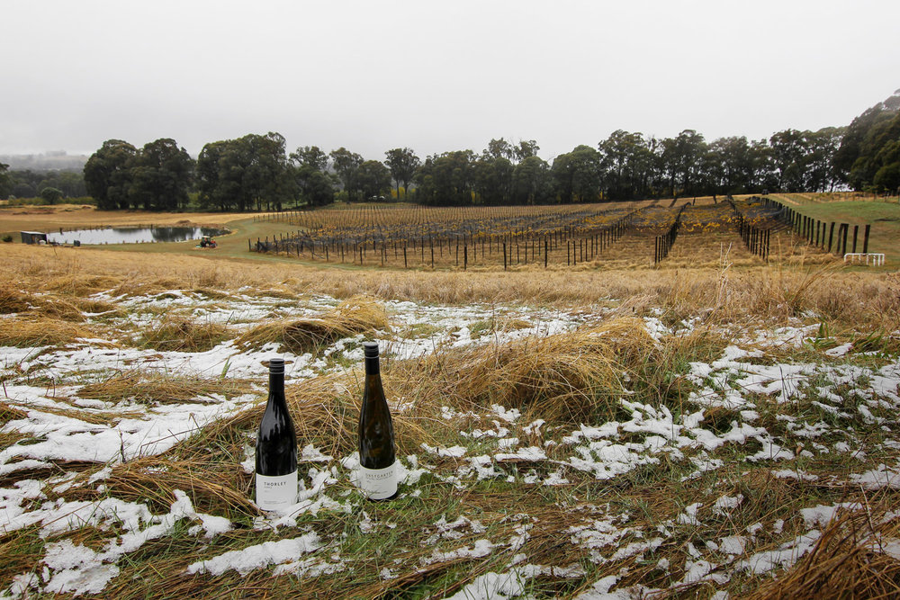 winter_2018_beechworth_05.jpg