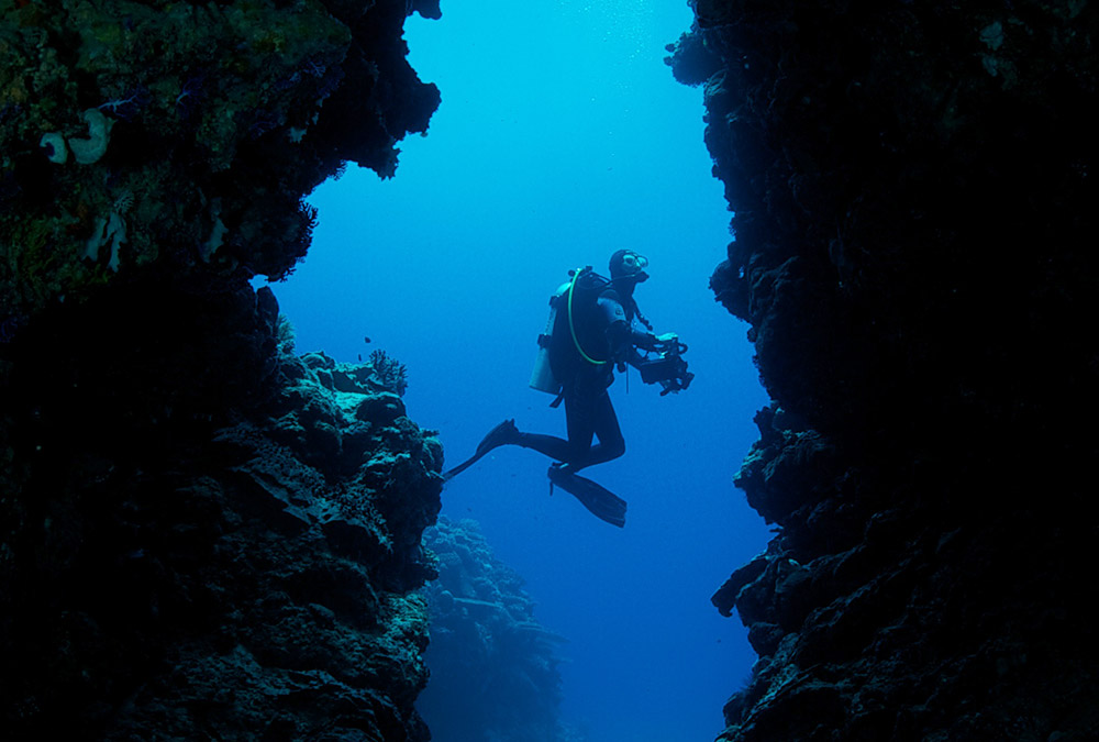 diver-in-palau.jpg