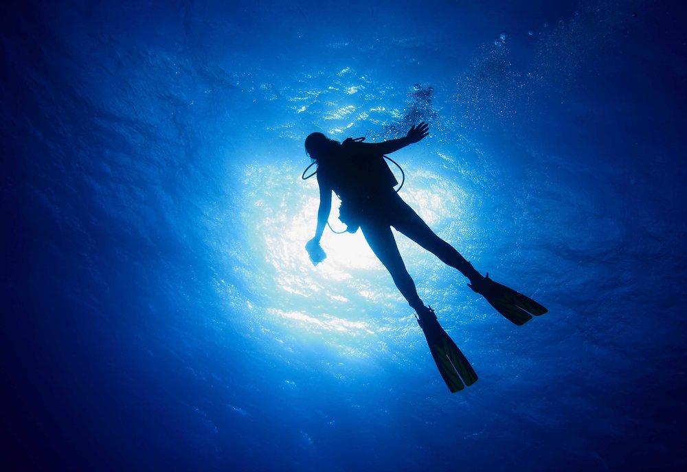 diving.original.x.jpg