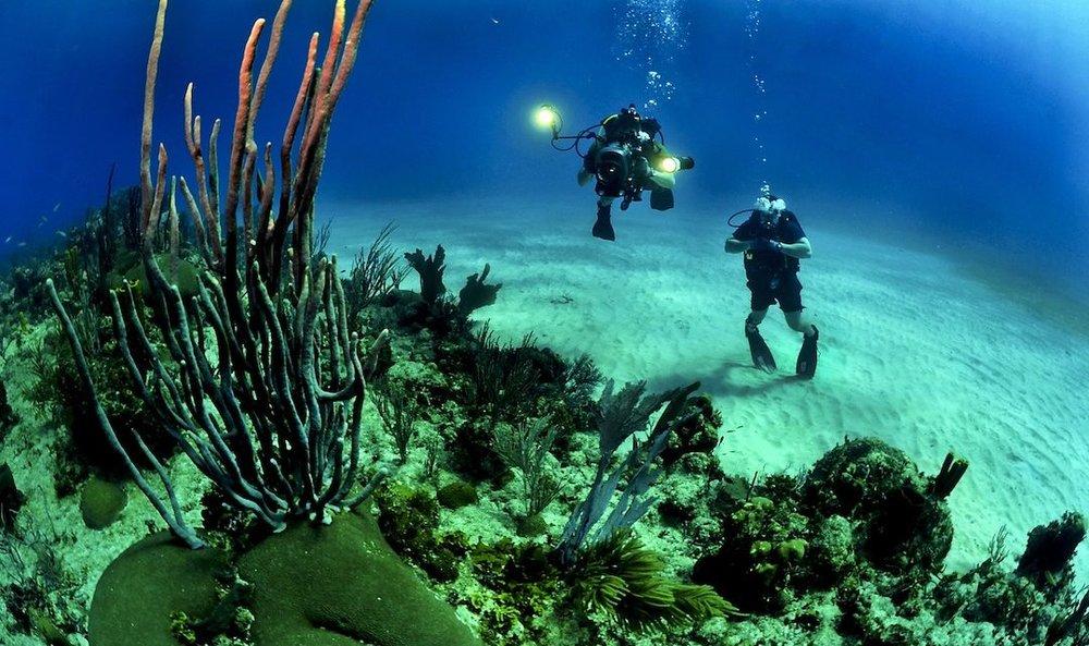 Underwater-Photography-1080x640.jpg