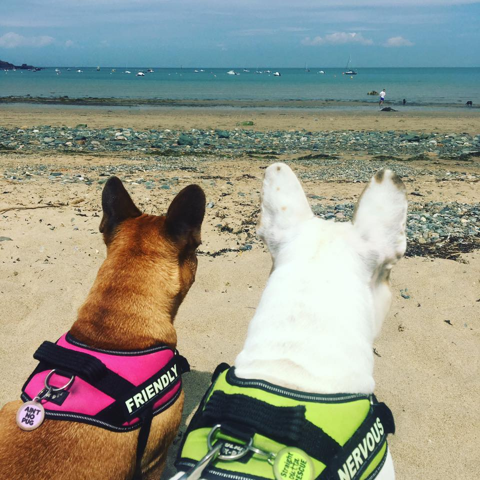 FBS Brian enjoying the beach with his adorable sister