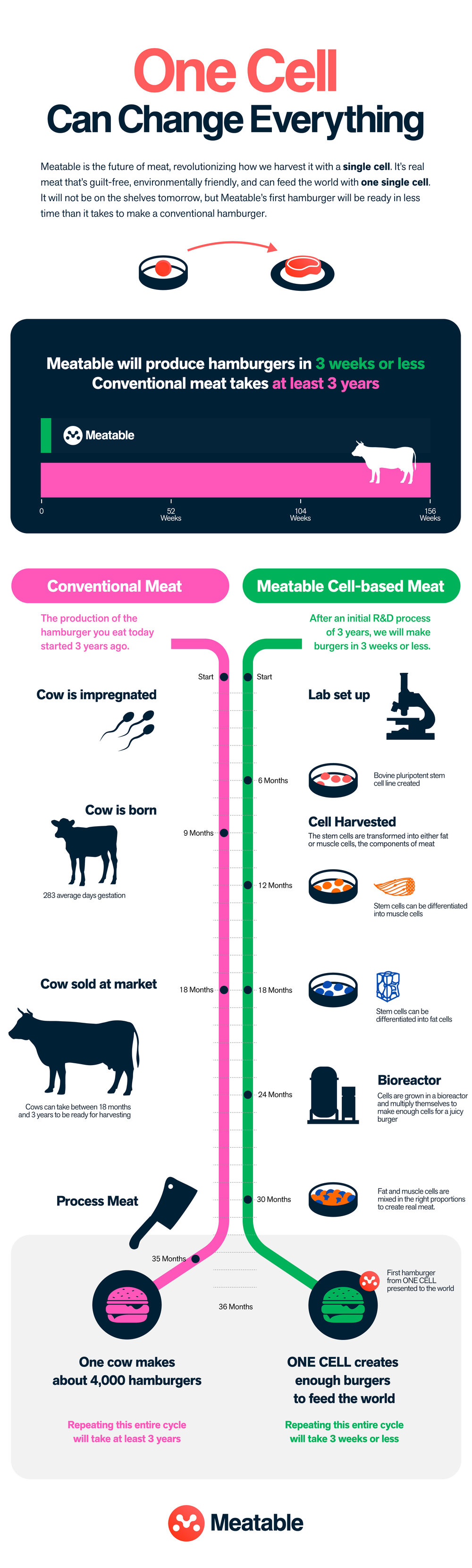Meatable_infographic_version-07-ENG.jpg
