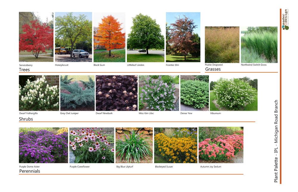 Plant Palette.jpg