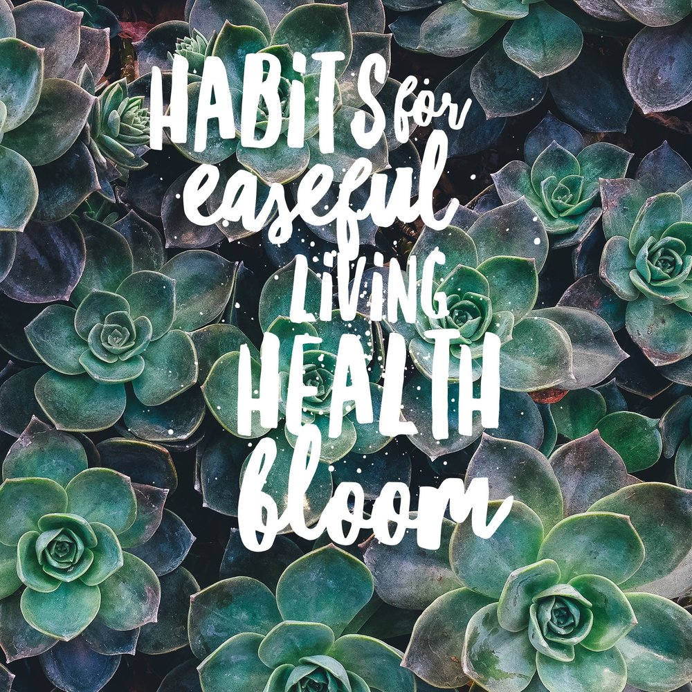 Are you ready to optimize your habits and lifestyle, and elevate your daily rituals? - This 10 week course will help general ease of living, create habits for getting better sleep, explore the creative process, jump start your wellness and set a growth mindset for your best self!Learn more ➝