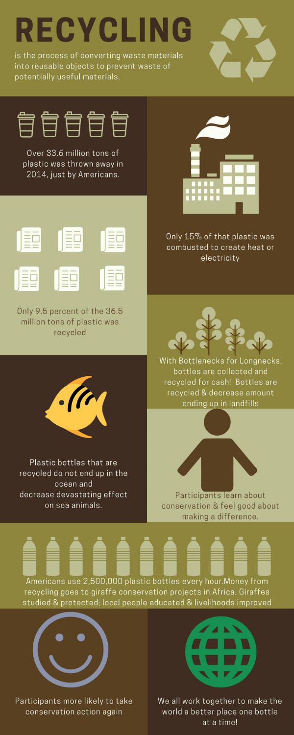 Recycling Facts Infographic.png