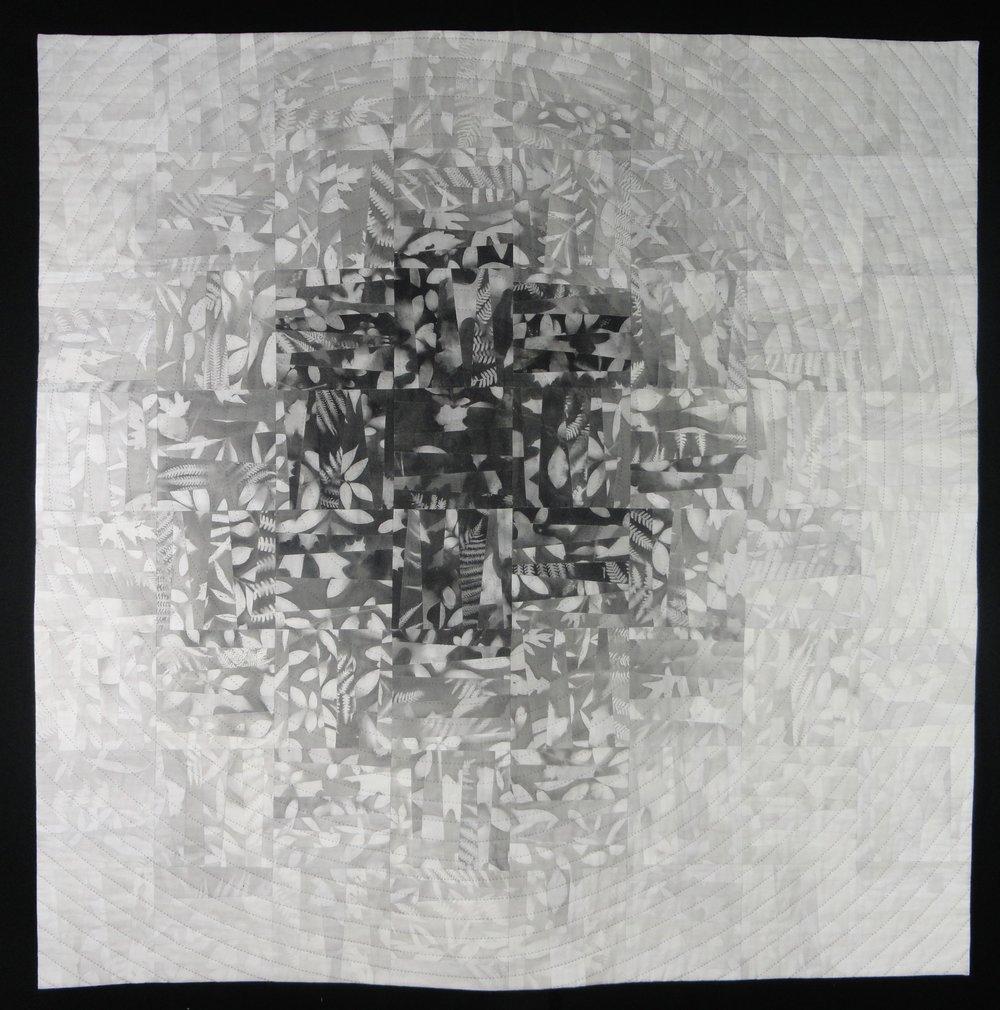 BlackHole, 50hx50w, 2015.JPG
