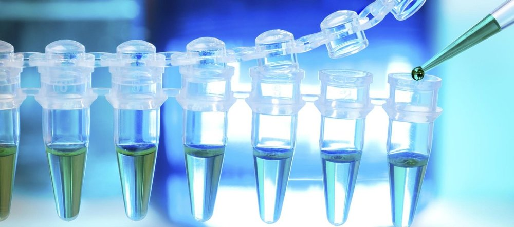 How to maximize Biotech exit value ? -