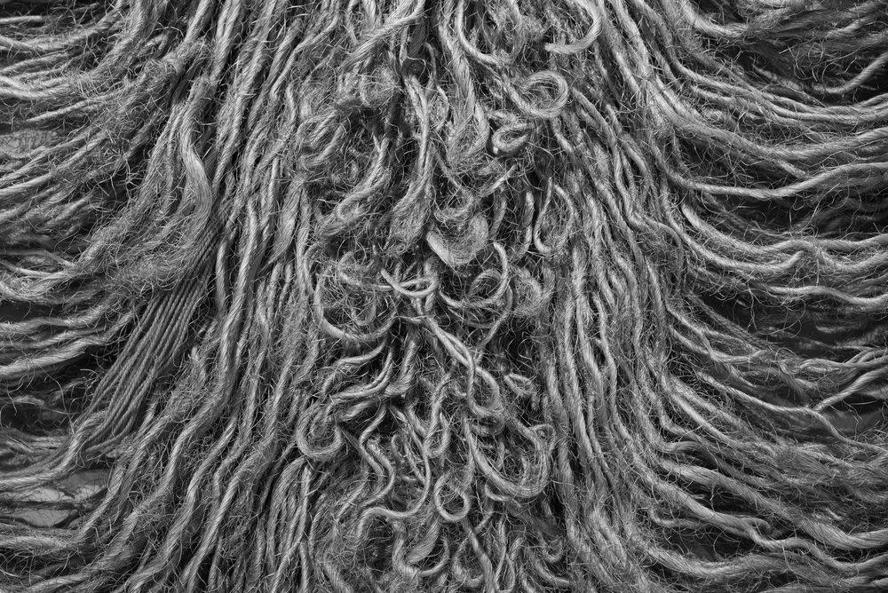 Fibroestructuras, Ella Krebs. Lima, Peru Leica M Typ 246 50mm f/2.0 APO Summicron © Keith R. Sbiral, 2018