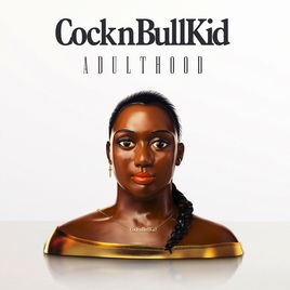 Cocknbullkid - Bassist and Guitarist. Toured throughout 'Adulthood' release. Highlights include Support tours with Janelle Monae, Kele, Marina & the Diamonds, Patrick Wolf, and arena tour with Duran Duran. Numerous Uk and European Festivals. Radio 1, Radio 2 & a number of live, TV, & acoustic sessions