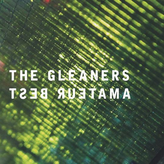 Amateur Best - Guitarist and Recorded guitar on 'The Gleaners'