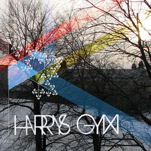 Harrysgrym_radioproofremix.jpg