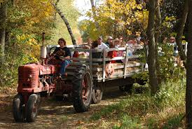 hayride  crowded thru the woods.jpg