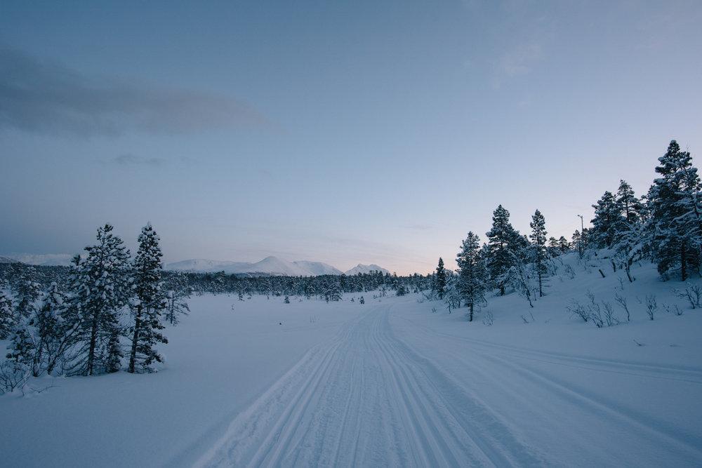 North Norway-3.jpg