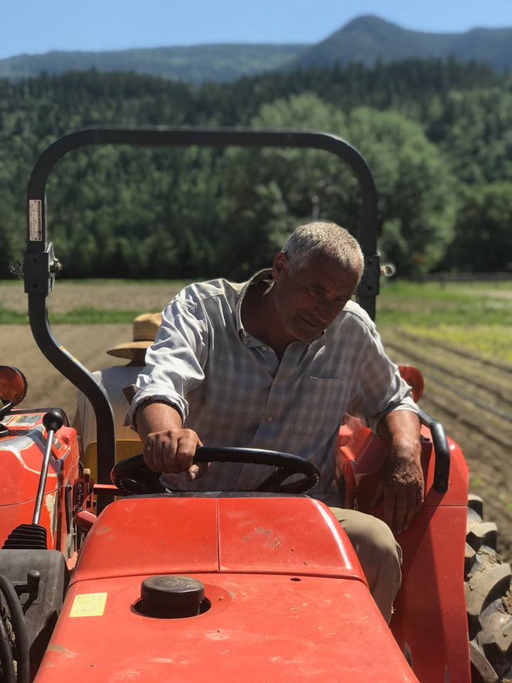 Wolf Wesle, owner of Greencroft Gardens and president of the board of directors, transplanting crops on his 10 acre organic farm.