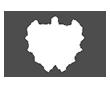 RWV_Int_Logo.png