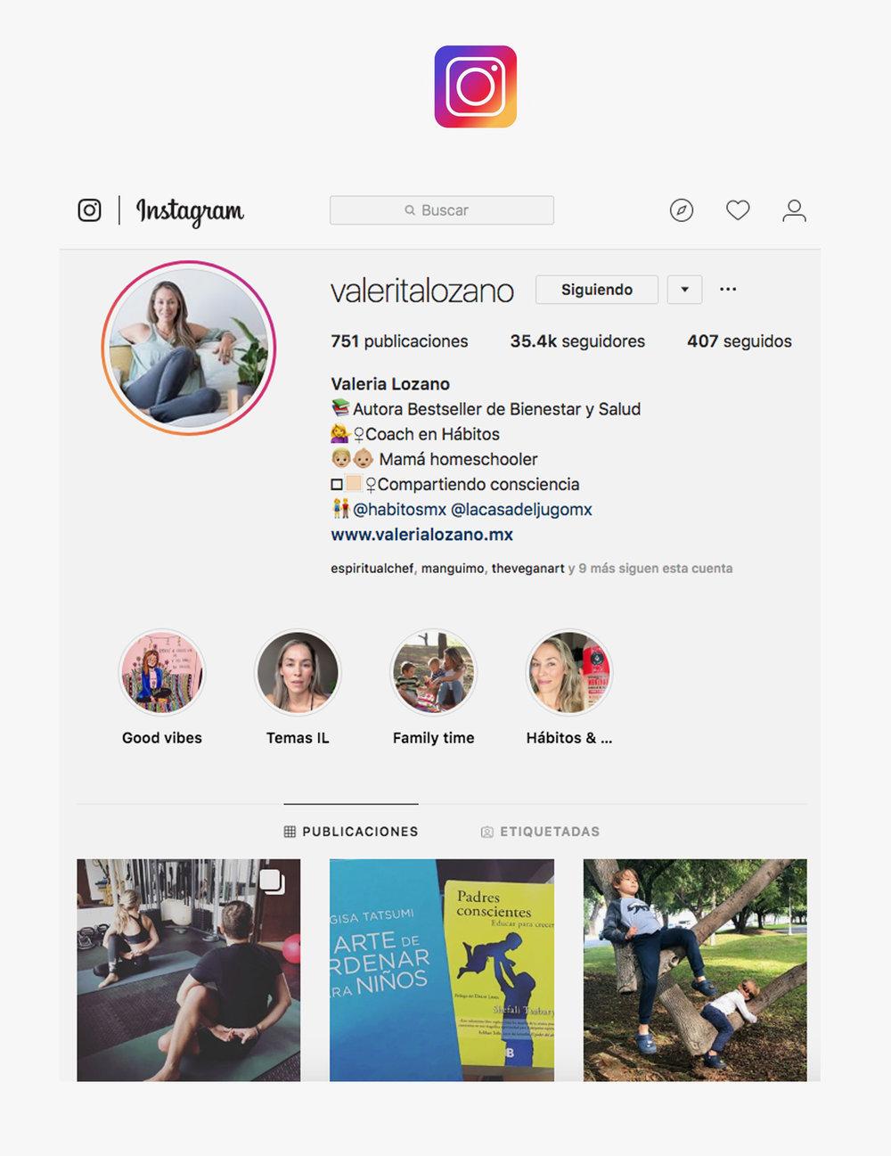 icono parainstagram.jpg