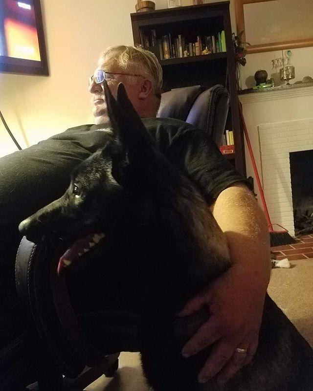 Wolfgang and his pal watching TV . . #WolfgangExpertDogTraining #WolfgangExpertDogTrainer #DogTraining #DogTrainer #WinterDays #WinterWeather #NothingButTheBest #LosAngeles #SoCal #SouthernCalifornia #DogsOfInstagram #WorkHardPlayHard #InKennelTraining #Gardena #Hollywood #WestHollywood #BeverlyHills #RodeoDrive #RunyonCanyon #ExpertTrainers #FunInTheSun #ProtectionDog #ProtectionDogs #ProtectionGSD