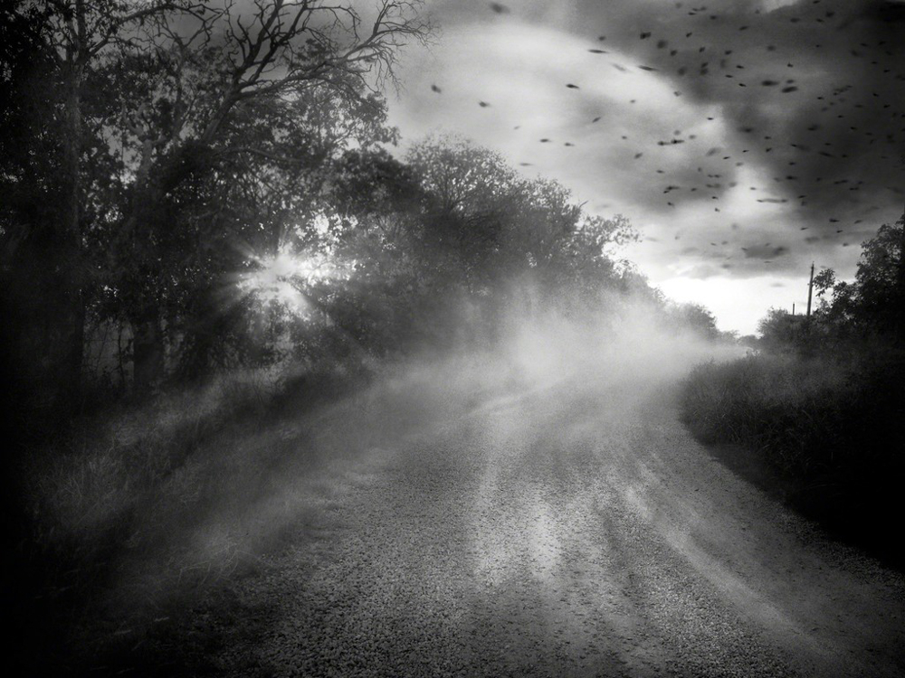 Angela Bacon-Kidwell // Chasing Hope, from Home by Nightfall // 2013