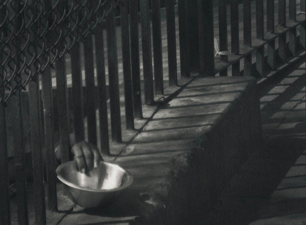 Honorable Mention: Begging Bowl by Nancy Goodrich