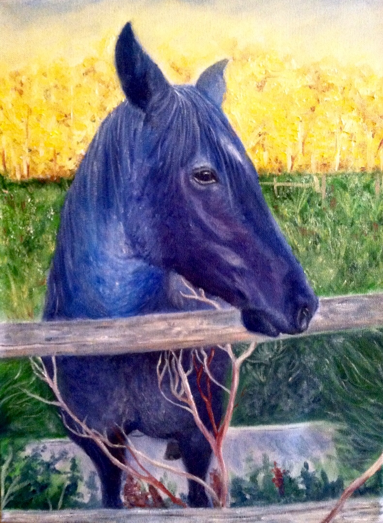 """Oil on canvas. 11"""" x 14"""". Commission"""