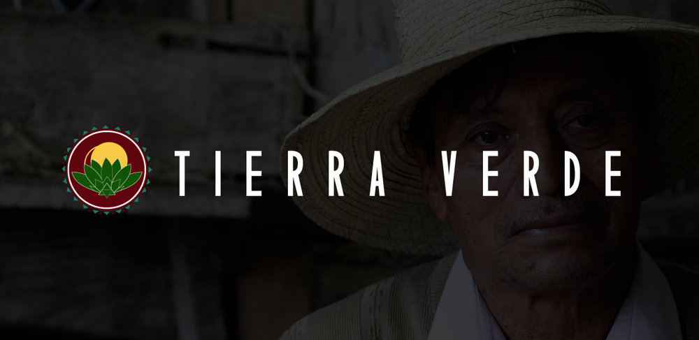 Date  January 2016 |  Client  Tierra Verde |  Services  design, development, photography
