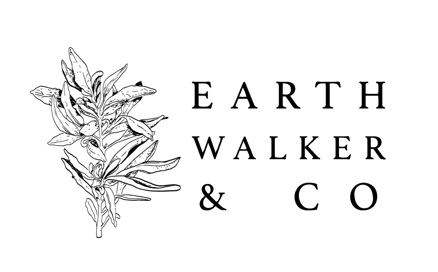 Earth Walker & CO.