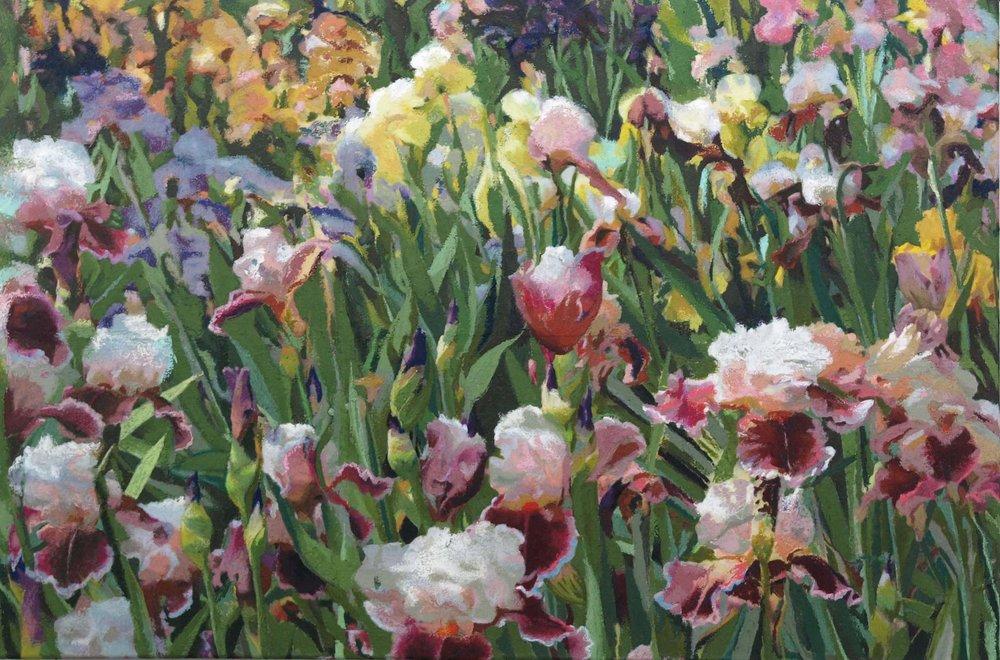 """iris field  24""""x36"""" (sold)"""