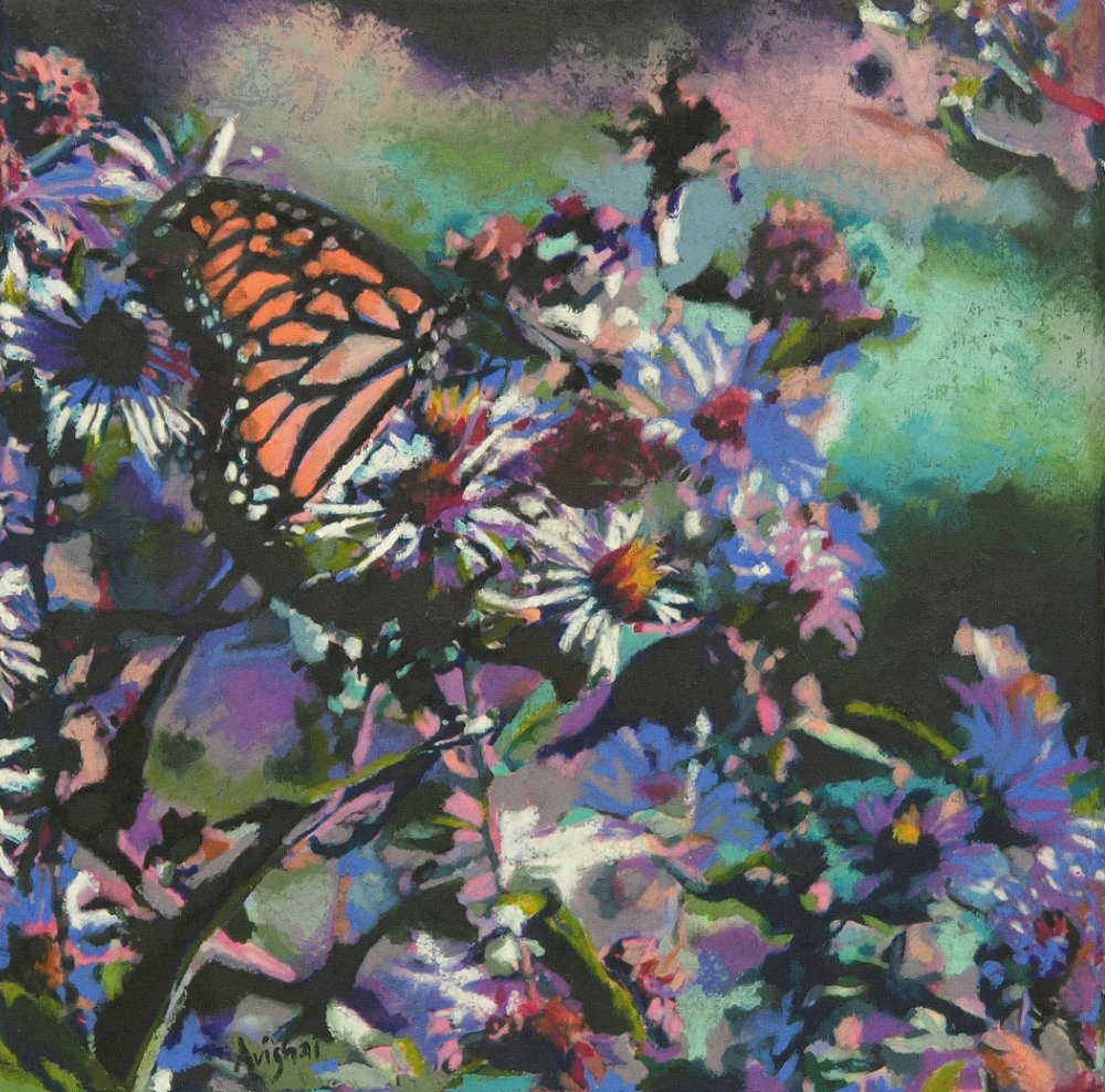 "monarch  12""x12"" (sold)"