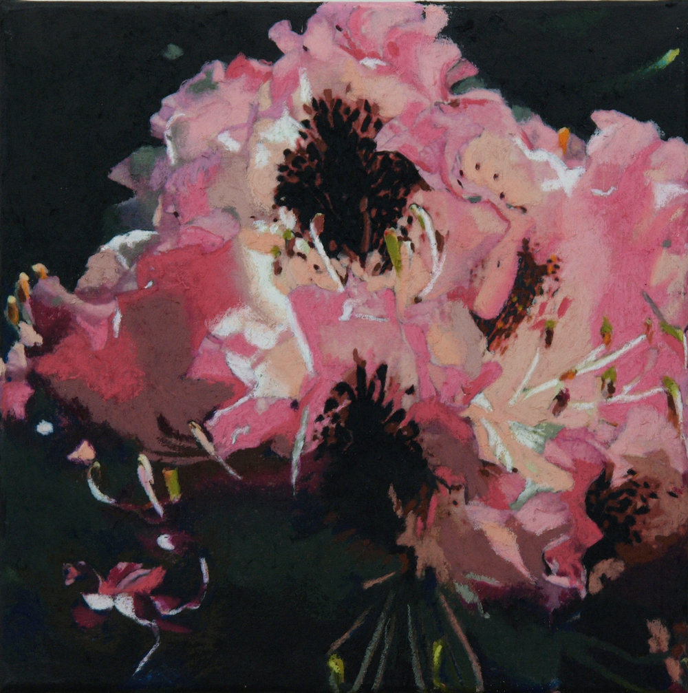 "rhododendron  12""x12"""