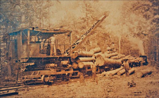 Rail Crane at Sawmill