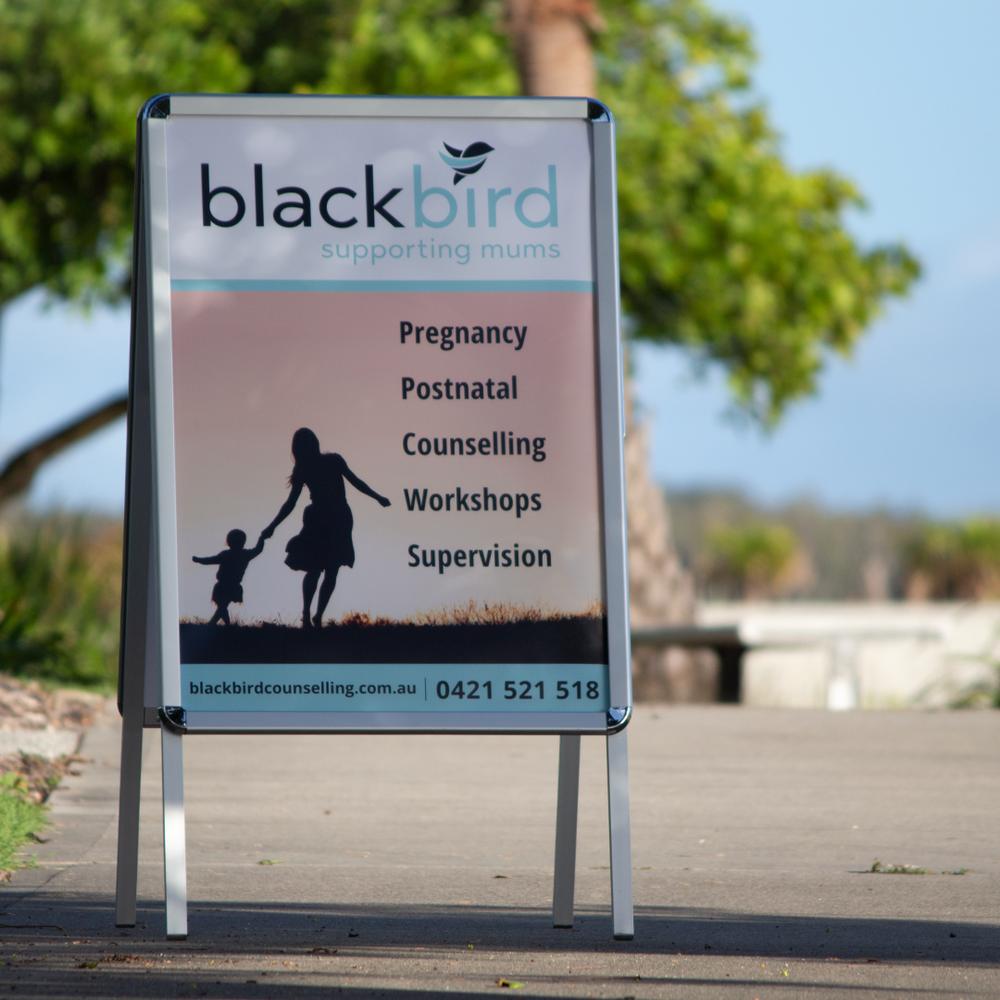 Blackbird-A-Frame.png