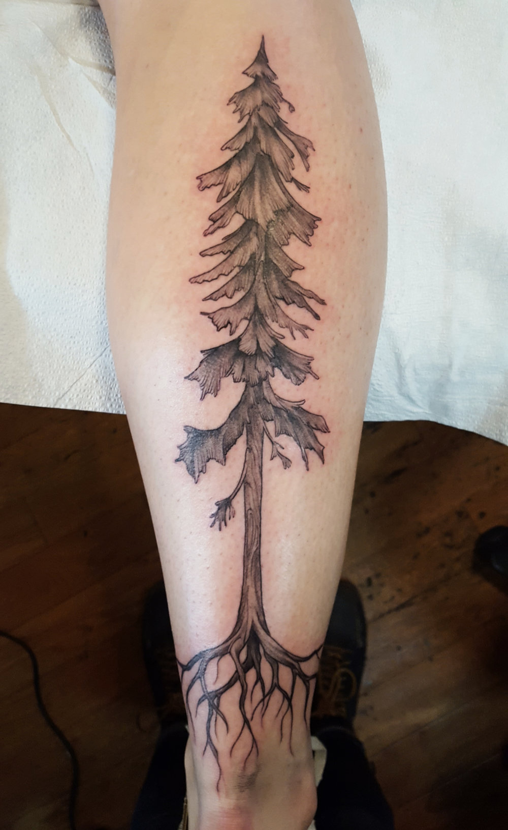 Tree with roots tattoo on calf .jpg