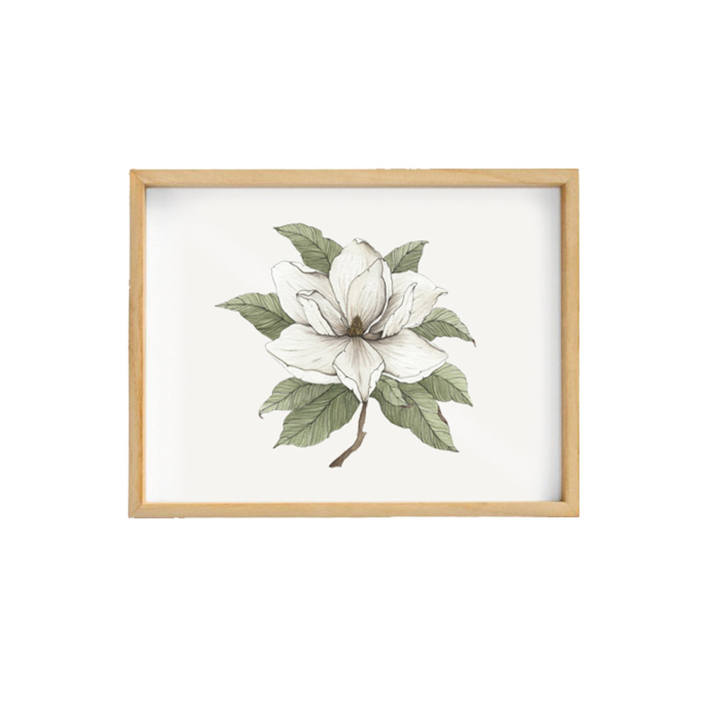 Finch Fleur Magnolia Blossom
