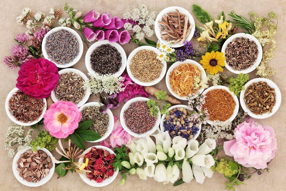 Ayurvedic+herbs.jpg