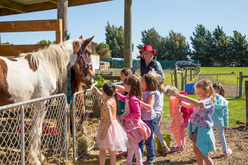 Pony Parties - Elizabeth-65.jpg