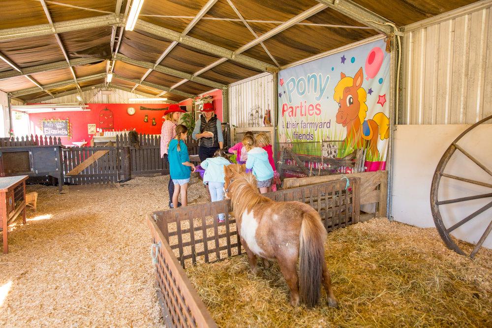 Pony Parties - Elizabeth-35.jpg