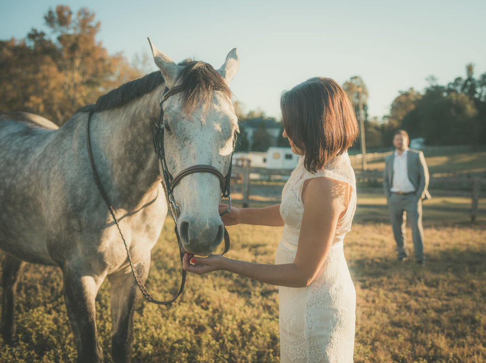 Bridal Portraits Shot in Raleigh NC with Horse.jpg