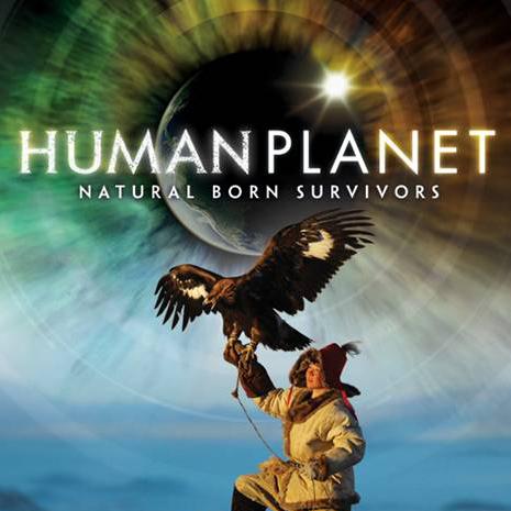 The Musician 2009 (Human Planet).jpg